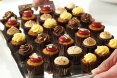 assorted baby cupcakes